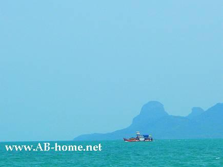 Travel from Surat Thani to Samui