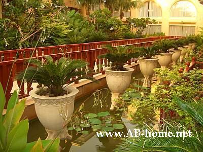 Hotel Phuket Graceland