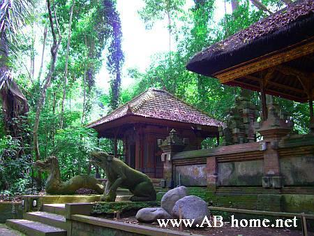 Jungle Sementary nere Ubud