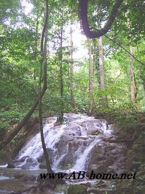 Phang Nga Forest Park