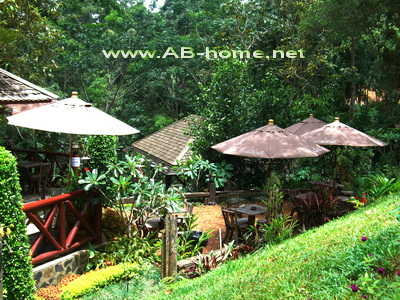 The Terrace of 32 Coffee Hill