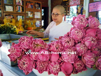 A Nun with Lotus flowers at Wat Doi Suthep