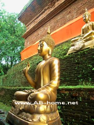 Buddha Images at Wat Lokmolee